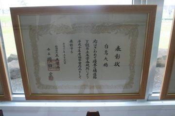 110_20090425_1999